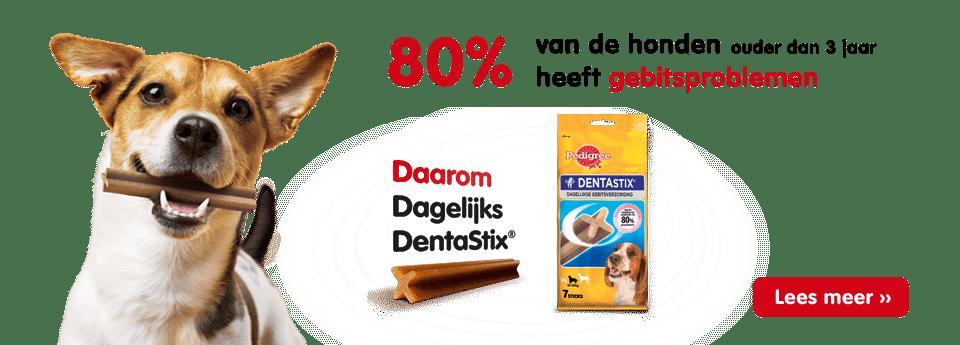 Verwen je hond met een Gratis proefpakket van Pedigree DentaStix!