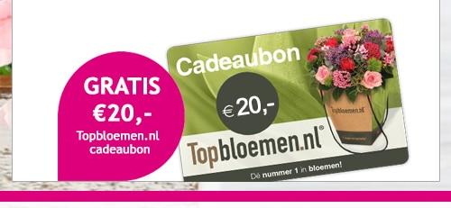 TrosKompas actie voor € 15 + Topbloemen cadeaubon € 20.-