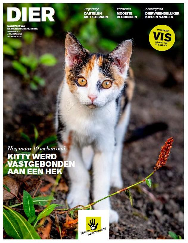 Wil je graag het tijdschrift Dier ontvangen? Vraag gratis het nieuwste van de dierenbescherming aan.
