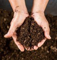 Gratis Compost ophalen op de Landelijke Compostdag