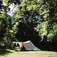 Gratis kamperen bij Staatsbosbeheer