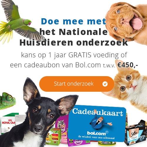 Gratis bij Zooplus 1 jaar huisdierenvoer of cadeaukaart