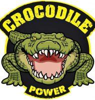 Gratis Pattex Crocodile Power t.w.v. € 17,45 Geld terug actie!