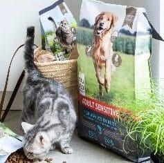 Gratis zak voer voor u Puppy of Kitten bij Intratuin