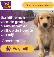 KNGF Geleidehonden geeft Spup Goochem cadeau