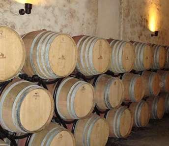 wijn vaten in de kelder.