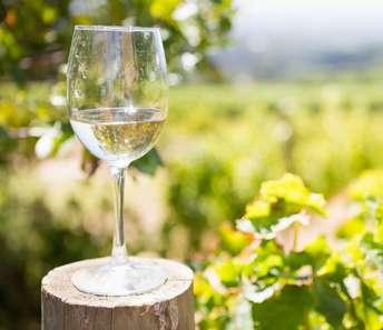 Doe Gratis mee met de Landelijke Wijn Enquete 2020?