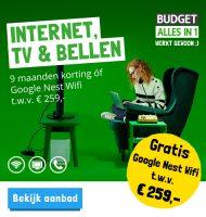 Gratis Google Nest Wifi en Wifi punt bij Budget