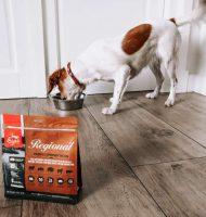 Gratis ORIJEN hondenvoeding pakket